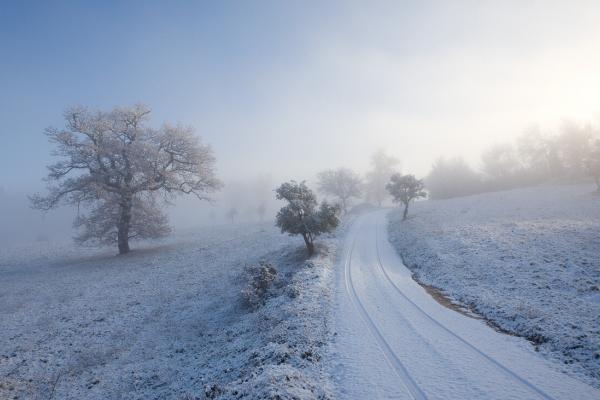 Una fredda mattina di inizio inverno